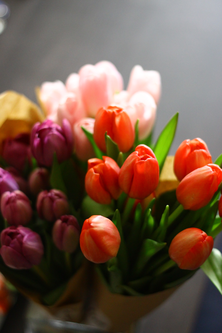 Flower Power - Tulips!