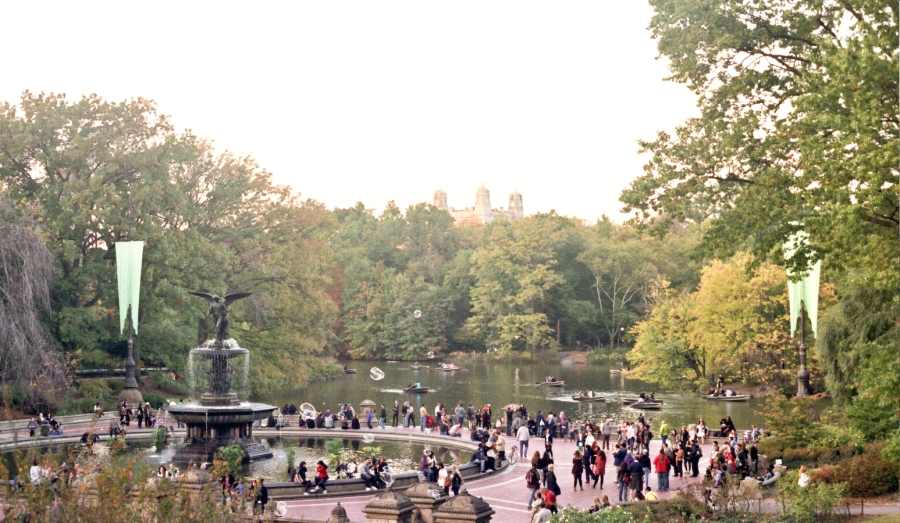 Tons of People in Central Park, NY, NY