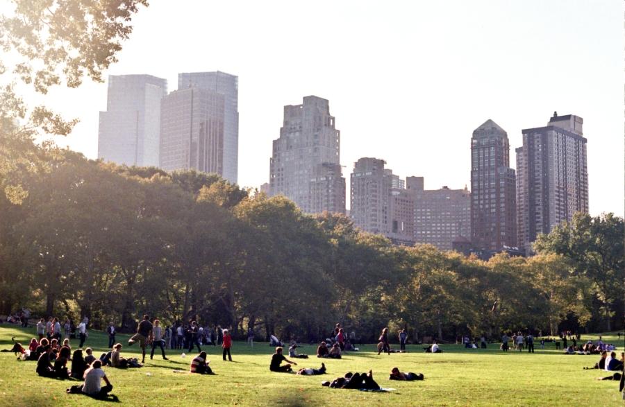 Central Park, NY, NY