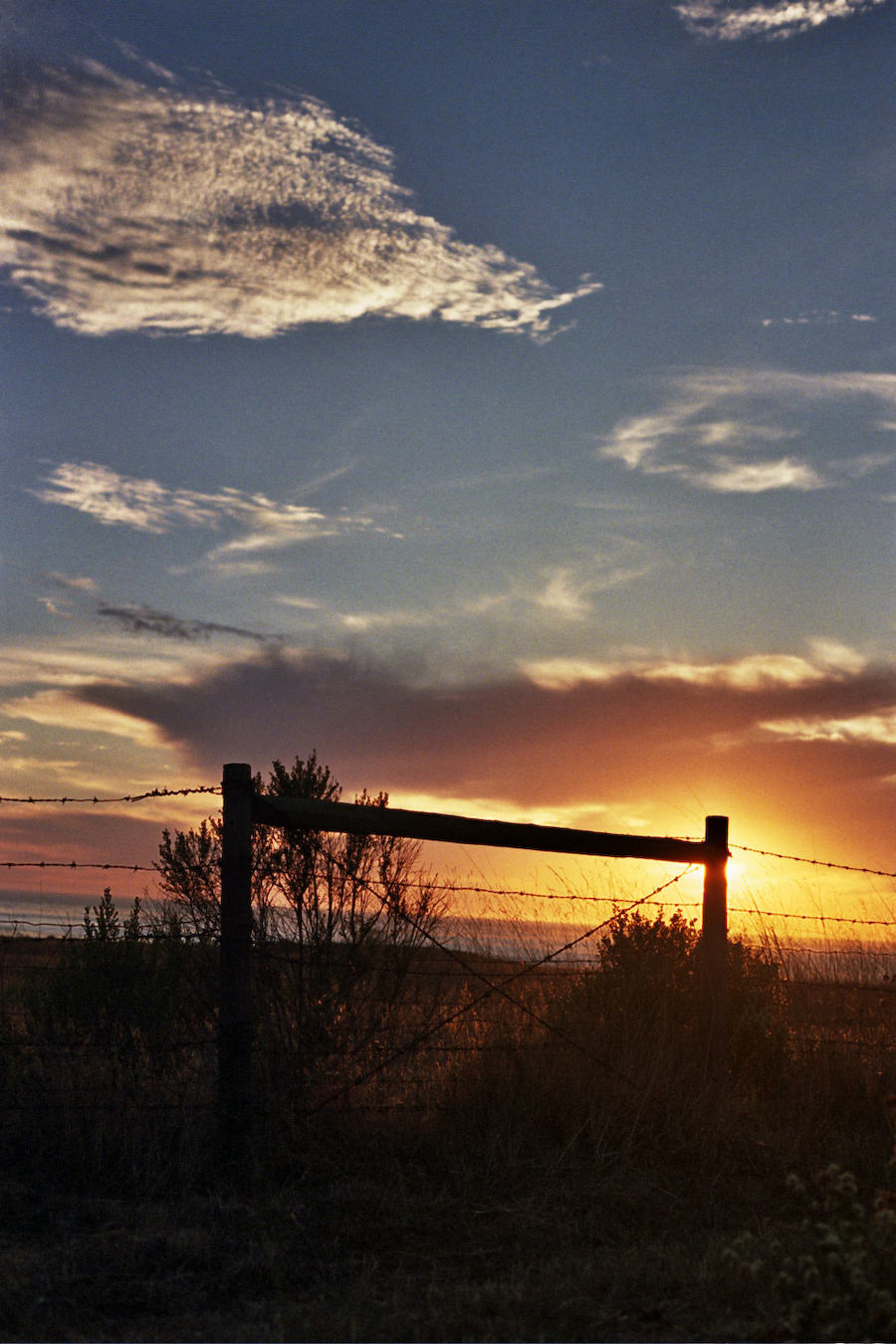 Sunset with a fence in Cambria, CA